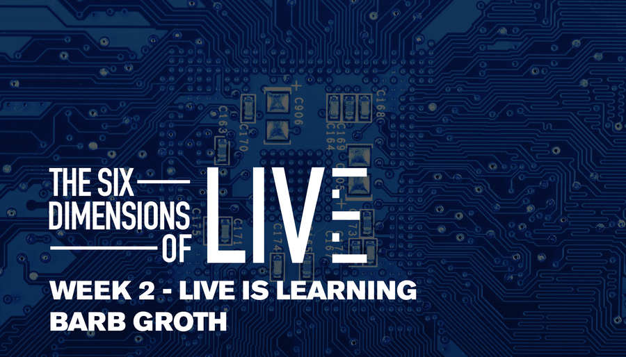 Six Dimensions of LIVE: Live is Learning