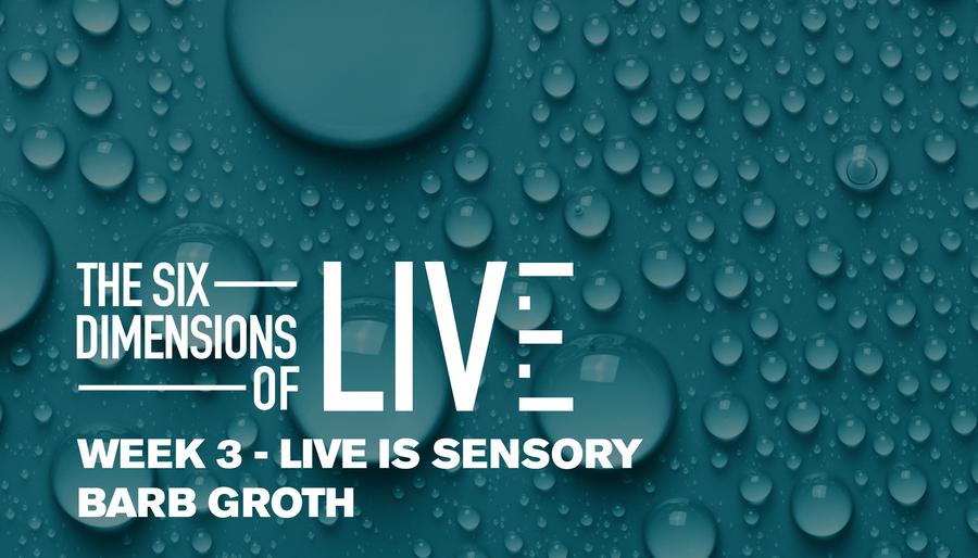 Six Dimensions of LIVE: Live is Sensory